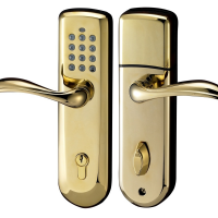 smart door lock in gold